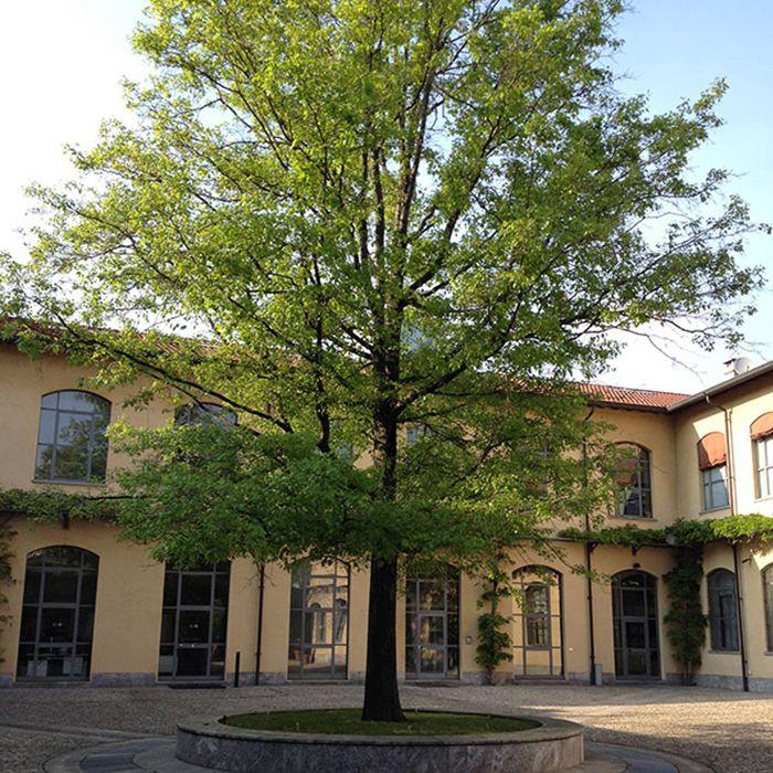 Giardini per condomini a Milano