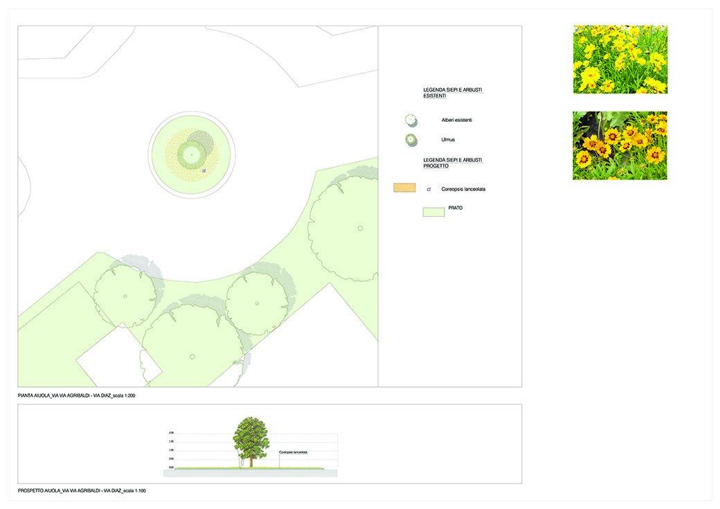 Creazione giardini pubblici