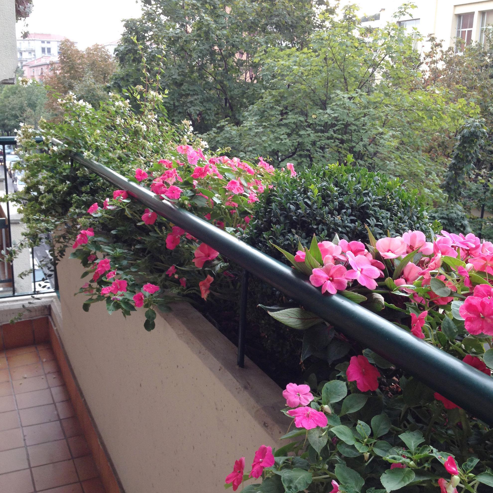 Realizzazione terrazzi fioriti a milano puligreen for Terrazzi fioriti